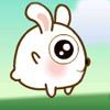 Jumping Baby Rabbit