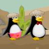 Bold Penguins